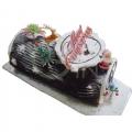 GFX0048-christmas logcake
