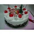 GFX0056-christmas cake singapore delivery