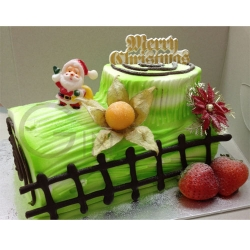 CX0506-emerald christmas cake