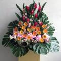 GF0790-grand opening flowers grand mandarin