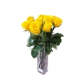 MF2002-Yellow Rosy