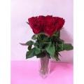 MF2010-Red Roses in Vase