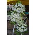 QF0473-White Pom Pom White Lilies Wreath