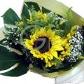 QF1210-sunflower bouquet